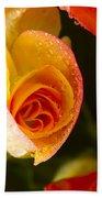 Flower Rieger Begonia 5 Bath Towel