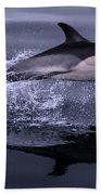 Flying Porpoise Bath Towel