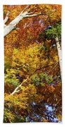 Forest In Autumn Bavaria Germany Bath Towel