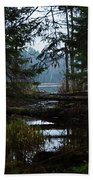 Forest Lake Bath Towel