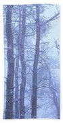 Frost Covered Trees In Fog, Alaska Bath Towel