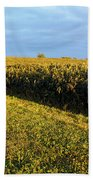 Frosted Soybeans Bath Towel