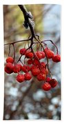 Frozen Mountain Ash Berries Bath Towel