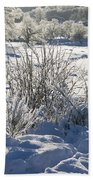 Frozen Winter Landscape Bath Towel