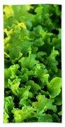 Garden Fresh Salad Bowl Lettuce Bath Towel