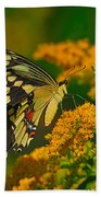 Giant Swallowtail On Goldenrod Hand Towel