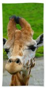Giraffe In The Park Bath Towel