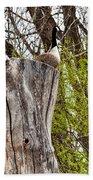 Goose Tree Bath Towel