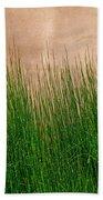 Grass And Stucco Bath Towel