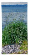 Grass On The Beach Bath Towel