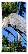 Great Blue Heron Concentration Bath Towel