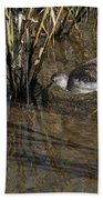 Greater Yellowlegs At Spi Bath Towel