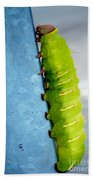 Green Caterpillar  Bath Towel