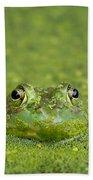 Green Frog Eyes Bath Towel