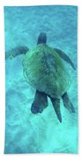 Green Sea Turtle 2 Bath Towel