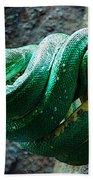 Green Snake Bath Towel