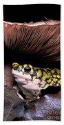 Green Toad Bath Towel