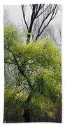 Green Tree And Pampas Grass Bath Towel