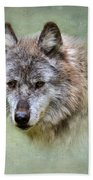 Grey Wolf Portrait Bath Towel