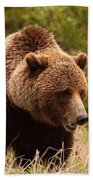Grizzly Bear, Yukon Bath Towel
