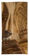 Ground Squirrel At Monument Valley Bath Towel