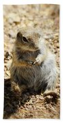 Ground Squirrel Bath Towel