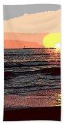 Gulls Enjoying Beach At Sunset Bath Towel