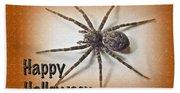 Happy Halloween Spider Greeting Card - Dolomedes Tenebrosus Bath Towel