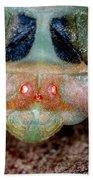 Head Of Cicada Bath Towel