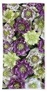 Hellebore Helleborus Sp Flowers Bath Towel