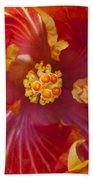 Hibiscus Center Bath Towel
