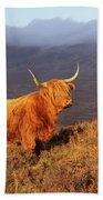 Highland Cattle Landscape Bath Towel