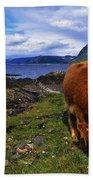 Highland Cattle, Scotland Bath Towel