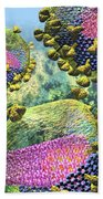 Hiv Three Sectioned Virions On Blue Bath Towel