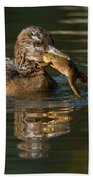Hooded Merganser And Bullfrog Bath Towel