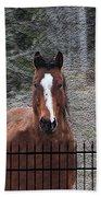 Horse Behind The Fence Bath Towel