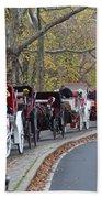 Horse-drawn Carriages Bath Towel