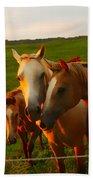 Horse Family Soft N Sweet Bath Towel