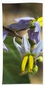 Horse Nettle Nightshade - Solanum Carolinense Bath Towel