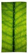 Horseradish Leaf Hand Towel