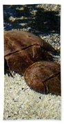 Horseshoe Crabs Bath Towel
