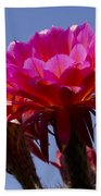 Hot Pink Cactus Flowers Bath Towel