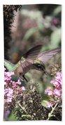 Hummingbird - Ruby-throated Hummingbird - Chopper Bath Towel