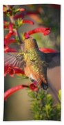 Hummingbird In Flight 1 Bath Towel