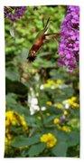 Hummingbird Moth In Flight  Bath Towel