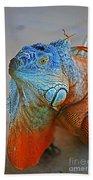 Iguana Close-up Bath Towel