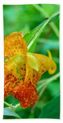 Impatiens Capensis - Orange Spotted Jewelweed Bath Towel