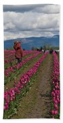 In The Tulip Fields Hand Towel
