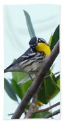 Inquisitive Yellow Throated Warbler Bath Towel
