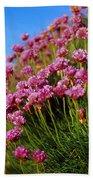 Ireland Close-up Of Seapink Wildflowers Bath Towel